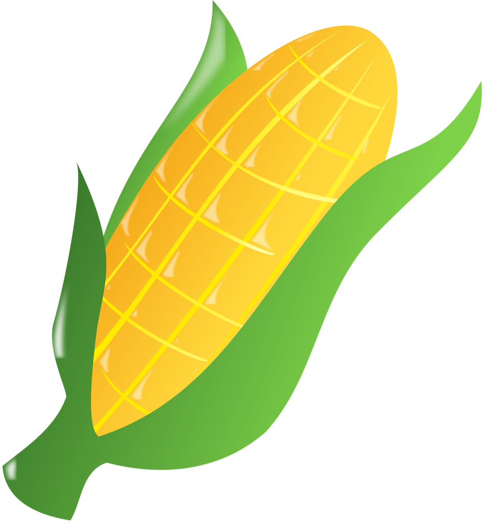 Ear of corn drawing. Ears clipart pop art
