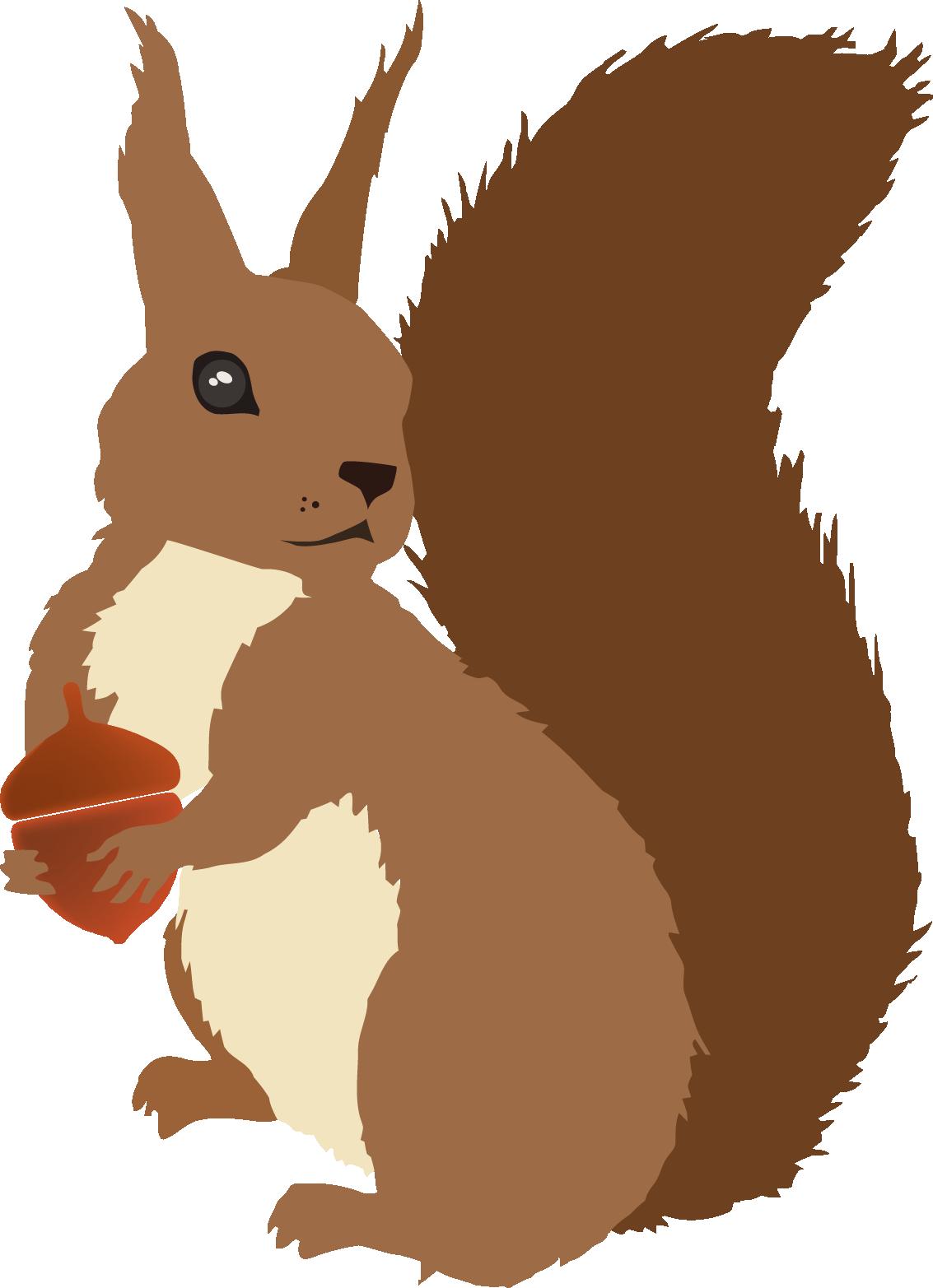 Winter clipart squirrel. Sciurusvulgaris redsquirrel vector trabajos
