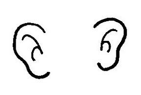 Clipart ear two ear. Human body panda free