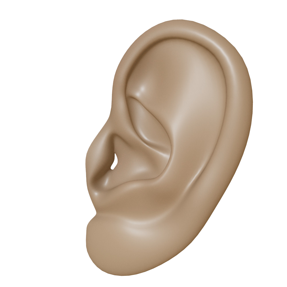 Clipart ear two ear. Png transparent images all
