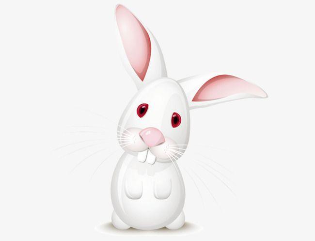 Clipart ear white rabbit. Pin on