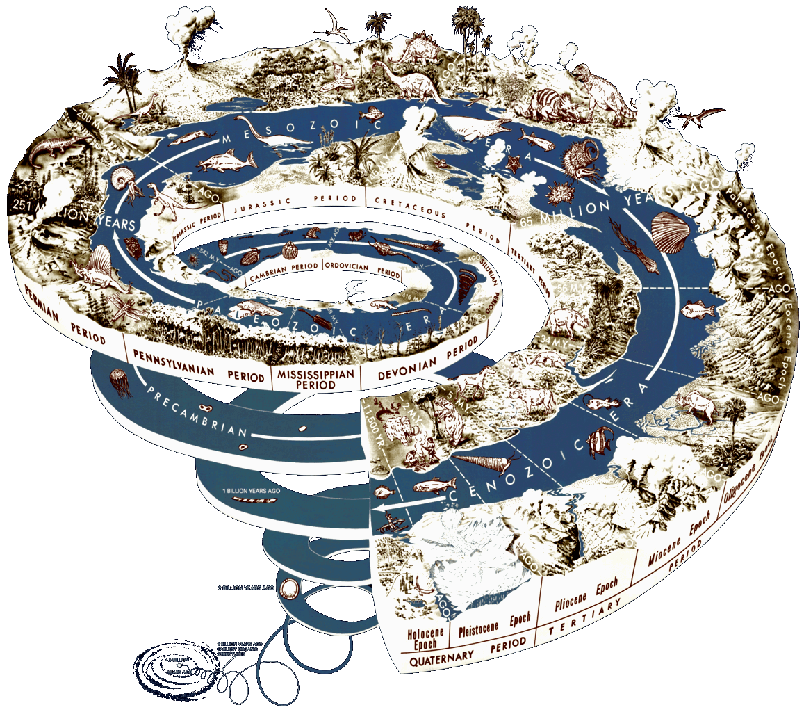 Overview history of life. Clipart earth diversity