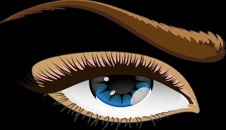 Eyebrow clipart kilay. Blue eyes small eye