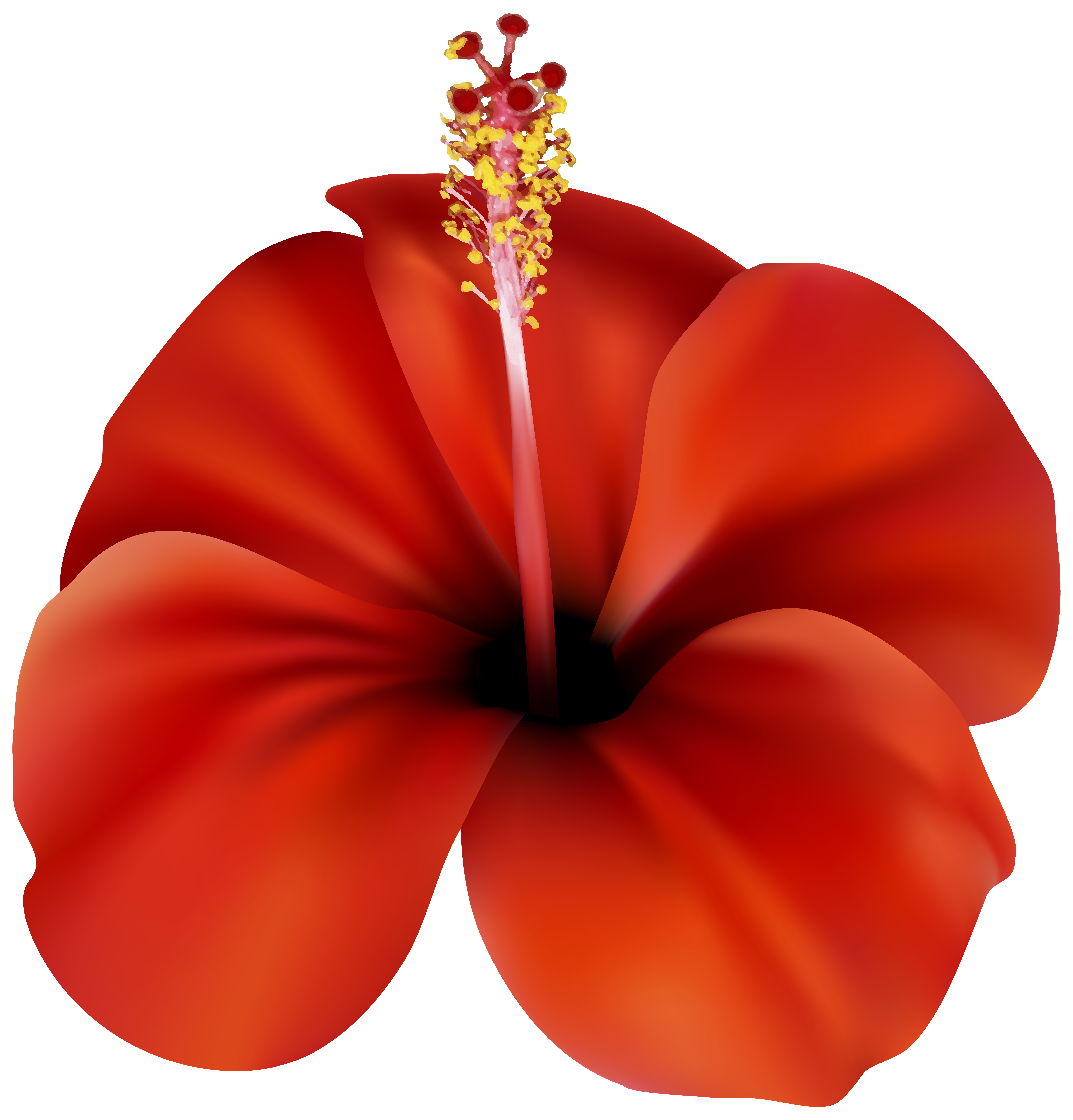 Shirt clipart hawiian. Red flower png clip