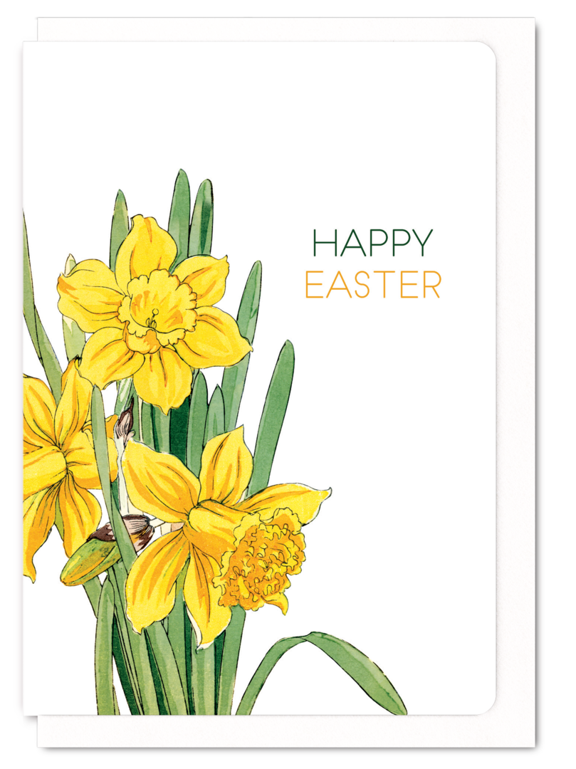 Happy . Clipart easter daffodil