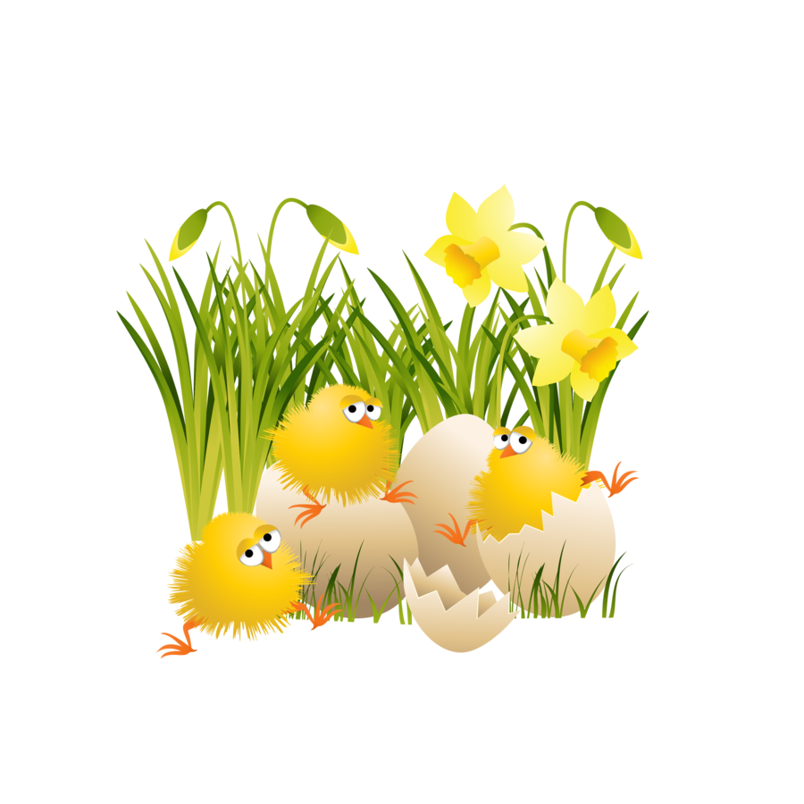 Large easter chicks gallery. Holiday clipart spring