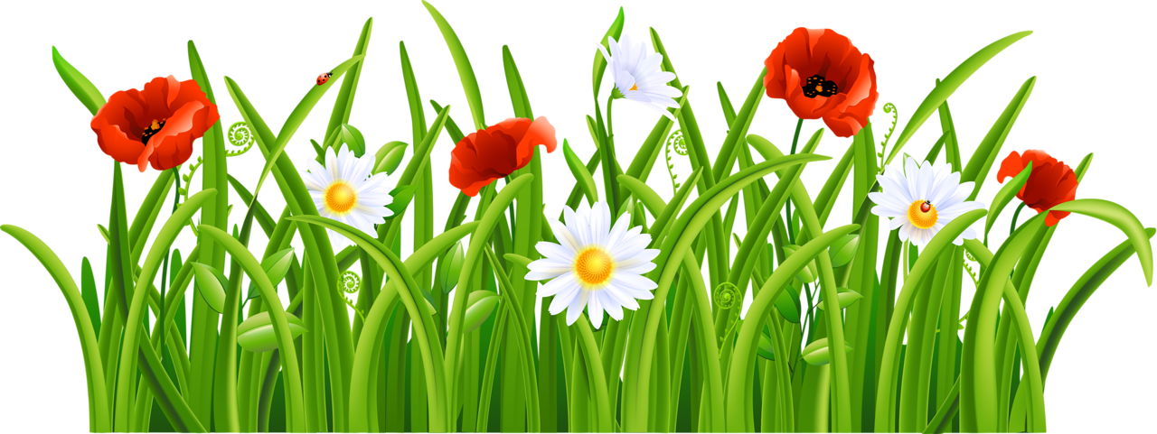 Of vector labs images. Clipart easter grass