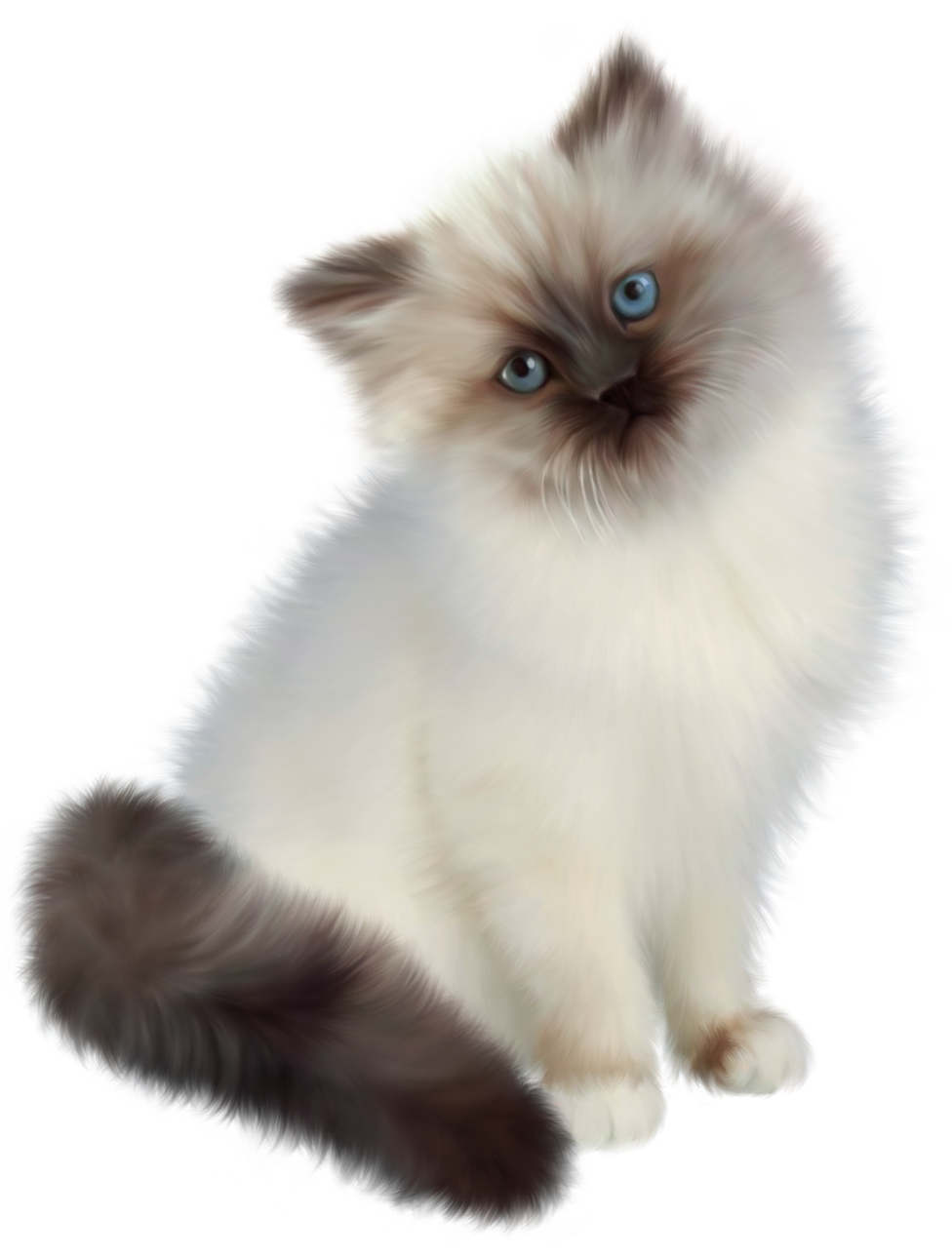 Transparent png gallery yopriceville. Clipart easter kitten