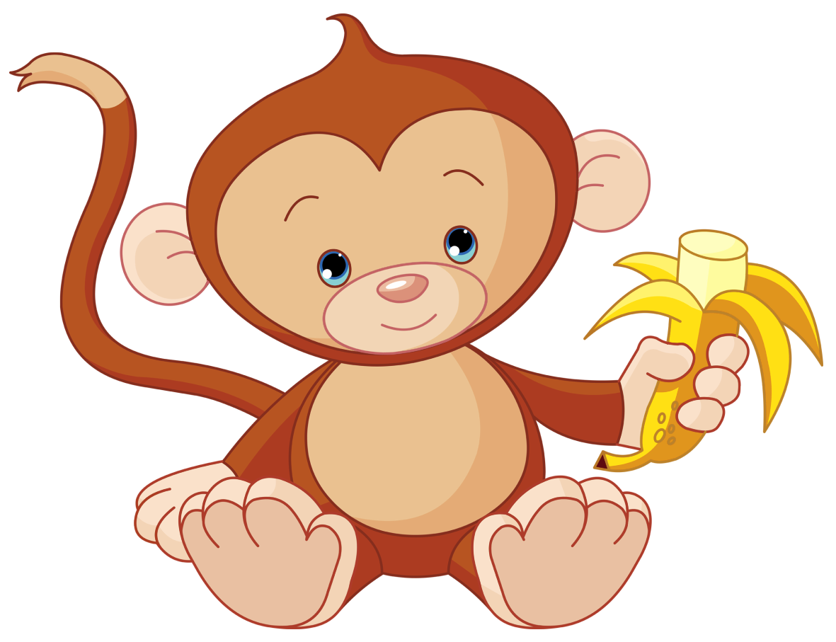 Png picture gallery yopriceville. Frames clipart monkey
