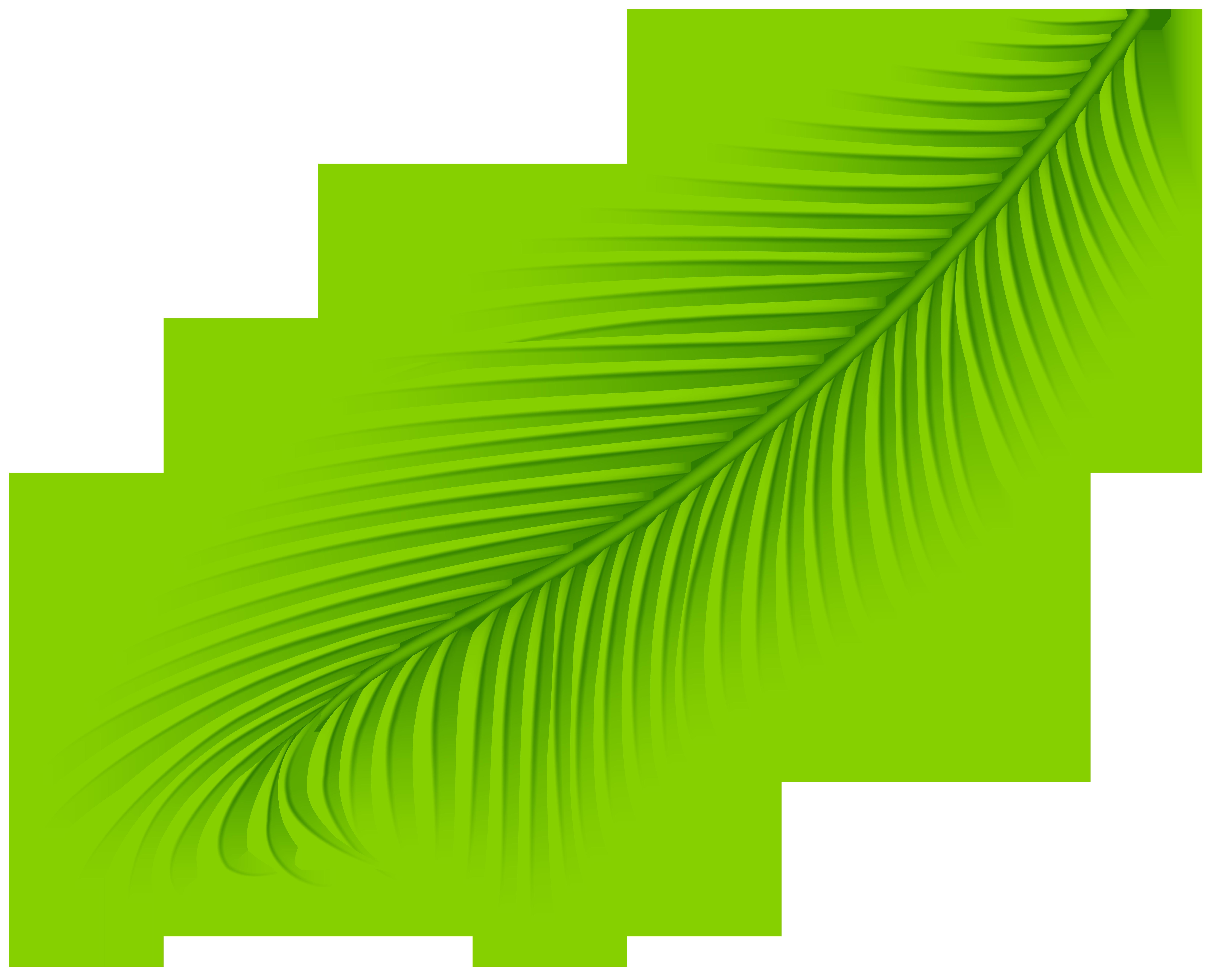 Palm clipart green branch. Transparent clip art gallery