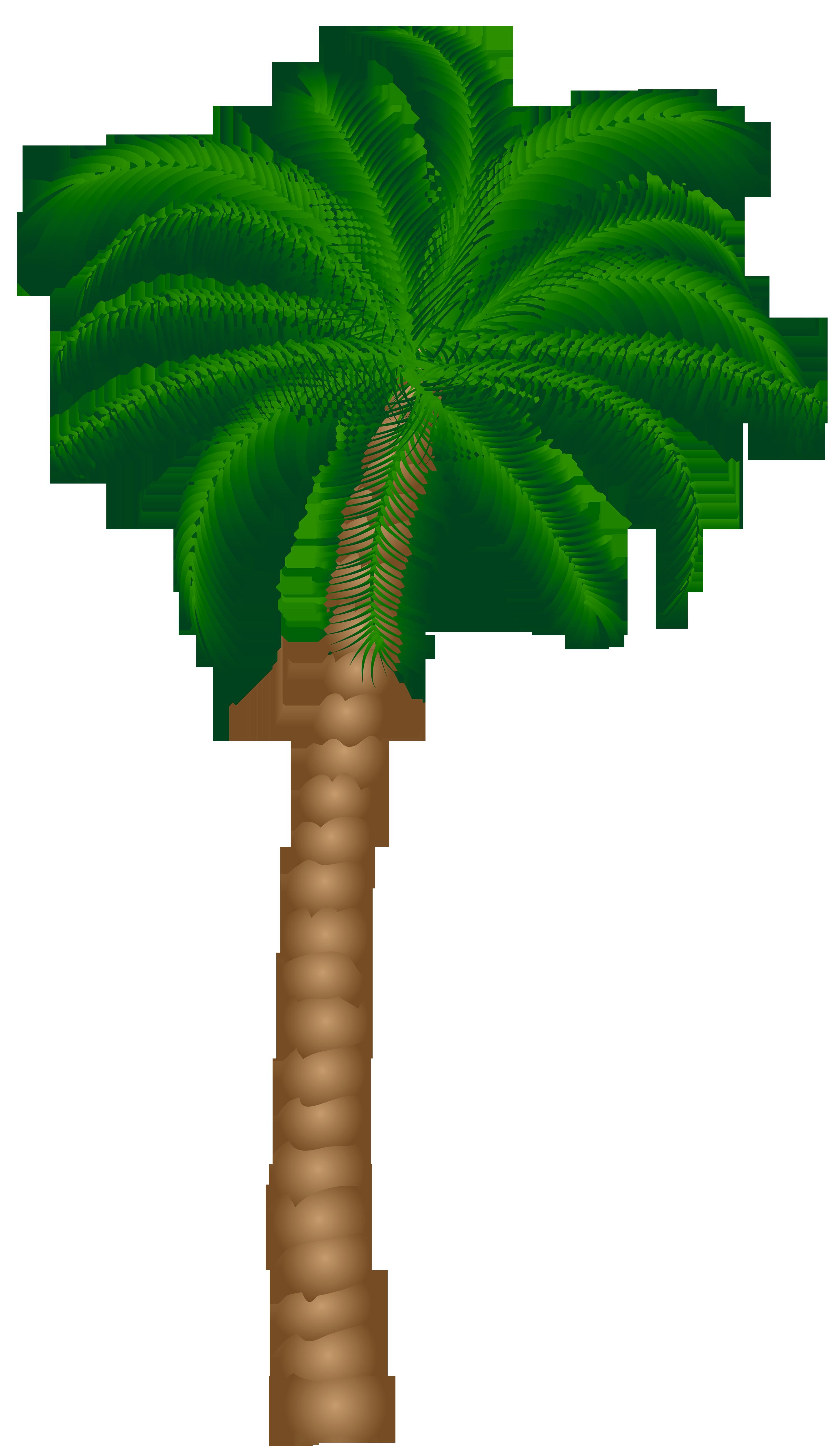 Desert clipart palm tree desert. Png gallery yopriceville high
