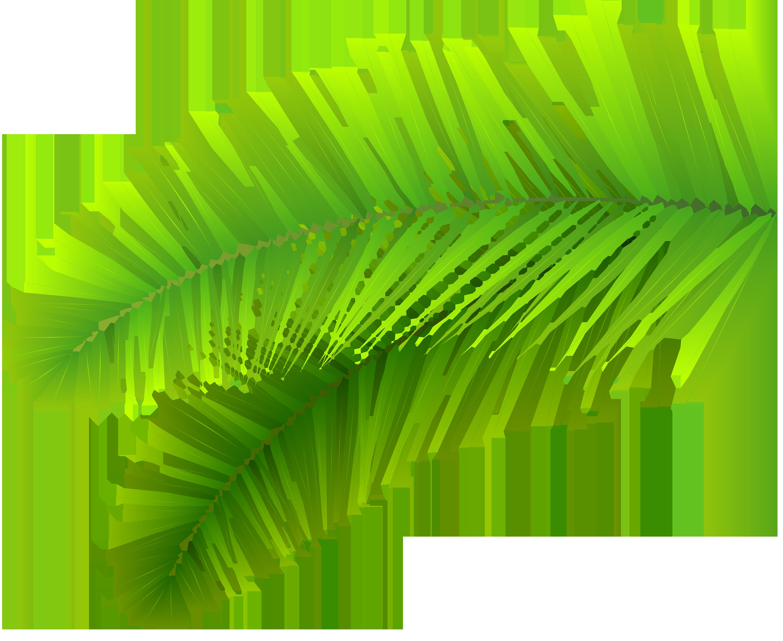 Decoration png clip art. Clipart leaves palm leaves