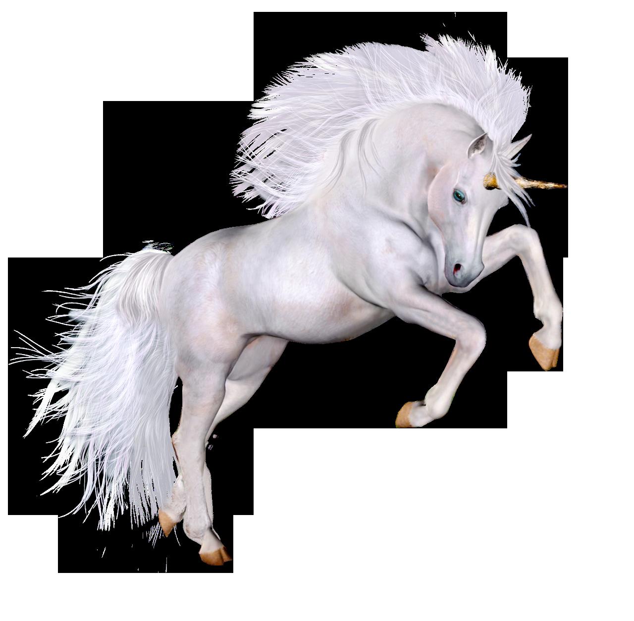 Beautifu d gallery yopriceville. Clipart unicorn high resolution