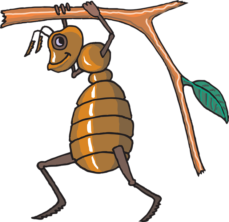 The riddle of and. Clipart elephant ant