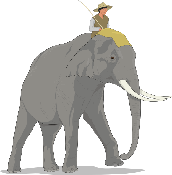 Clipart elephant front. And rider clip art