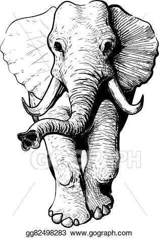 Vector art view drawing. Clipart elephant front