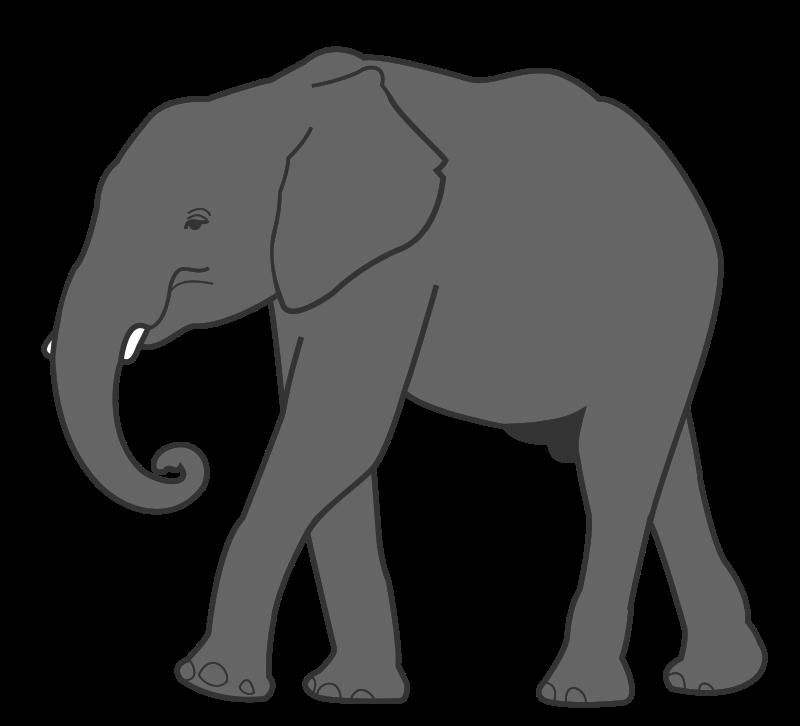 Clipart panda mammal. Elephant medium image png