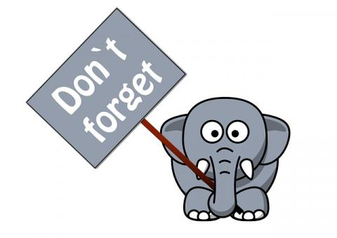 Just a elephant jpg. Elephants clipart reminder