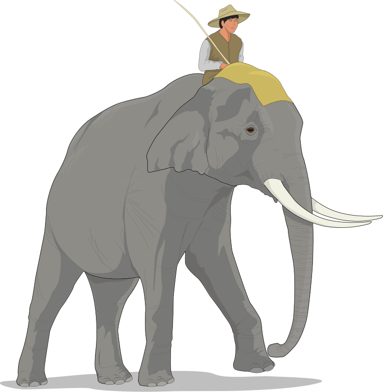 Clipart elephant soccer. Animal pictures royalty free