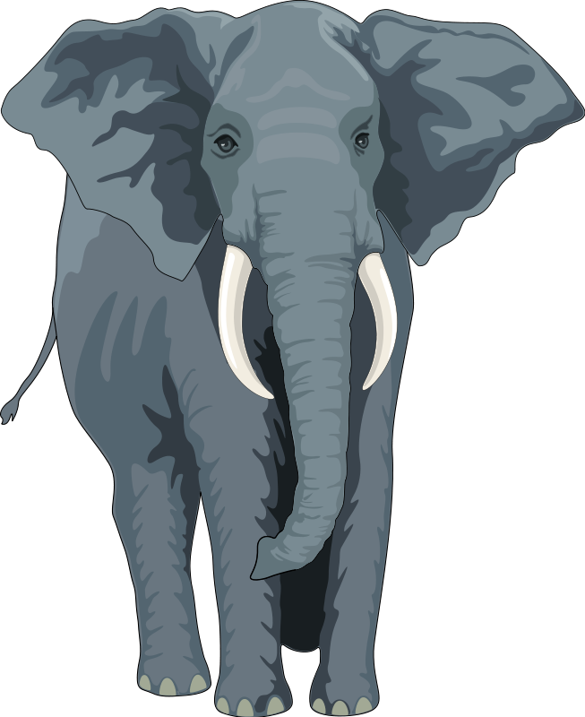 Animal pictures royalty free. Clipart elephant soccer