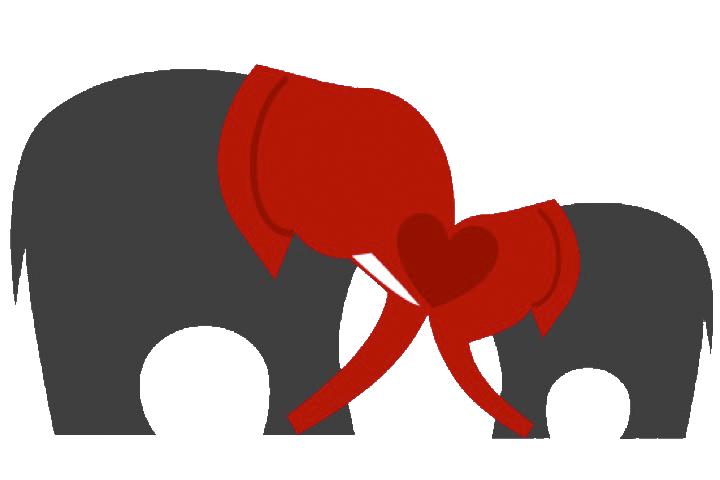 Ca elephants connection africa. Clipart elephant soccer