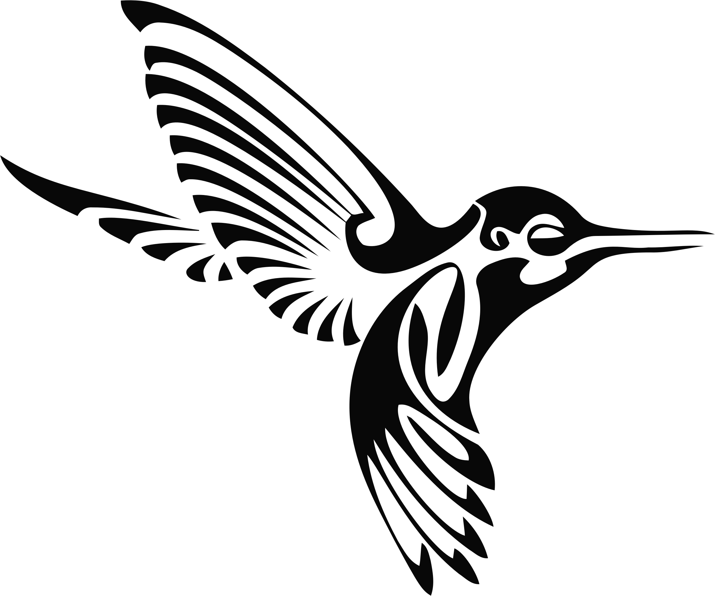 Hummingbird silhouette bclipart clipartblack. Wildcat clipart tribal
