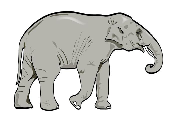 Free elephant art download. Elephants clipart vector