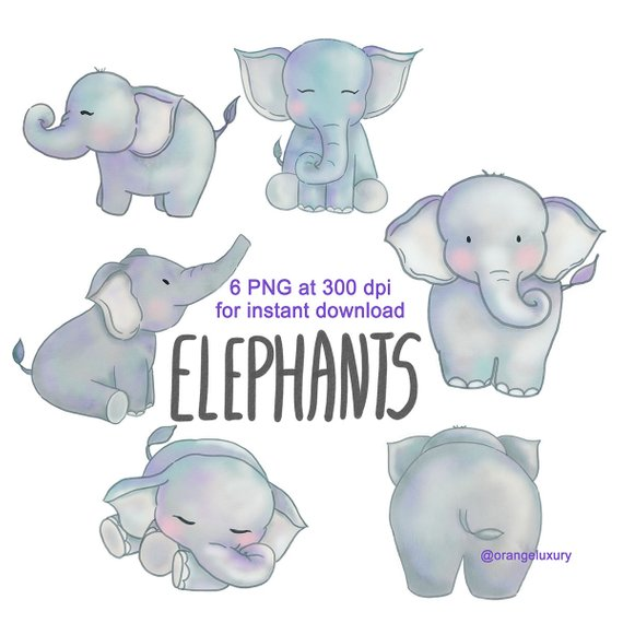 Clipart elephant watercolor. Instant download