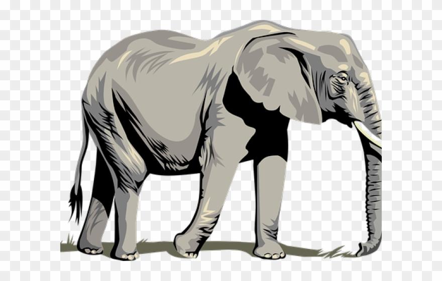 Clipart elephant wild animal. Tusk asia clip art