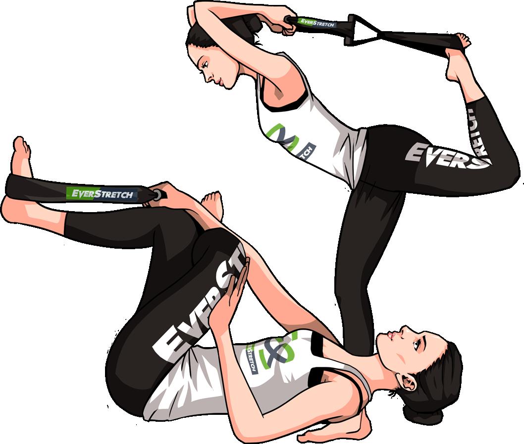 Exercising clipart different exercise. Everstretch premium stretching equipment