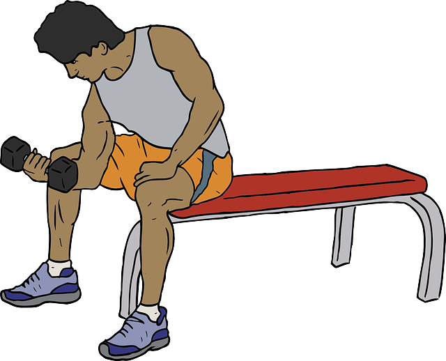 Exercise clipart muscle. My gym workout office