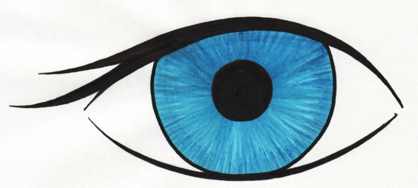 For teachers panda free. Clipart eye