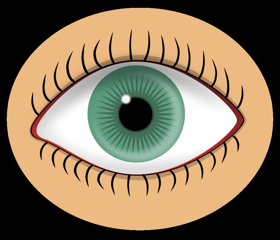 Public domain clip art. Eyelashes clipart woman's