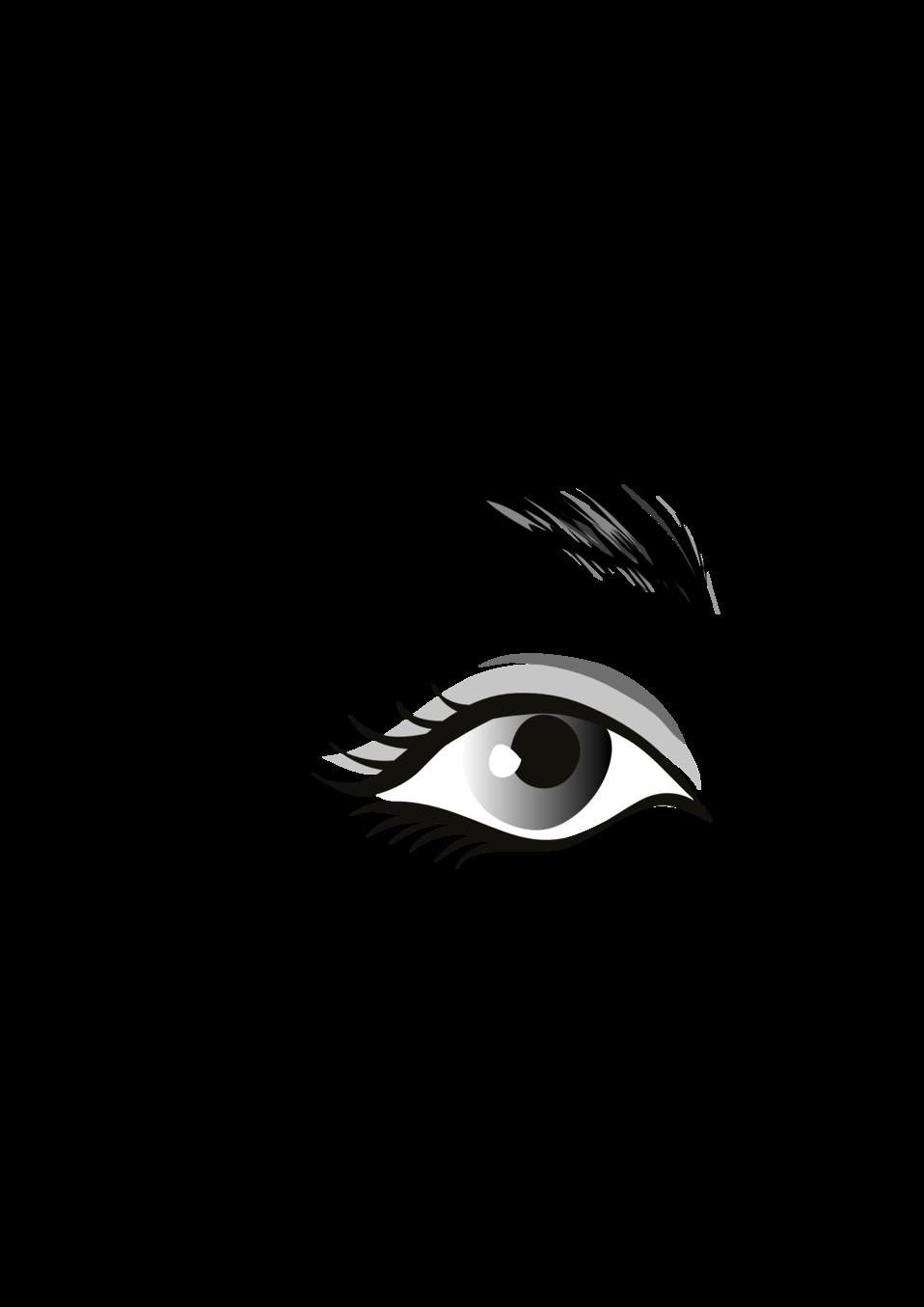 Eyelash clipart illustration. Public domain clip art