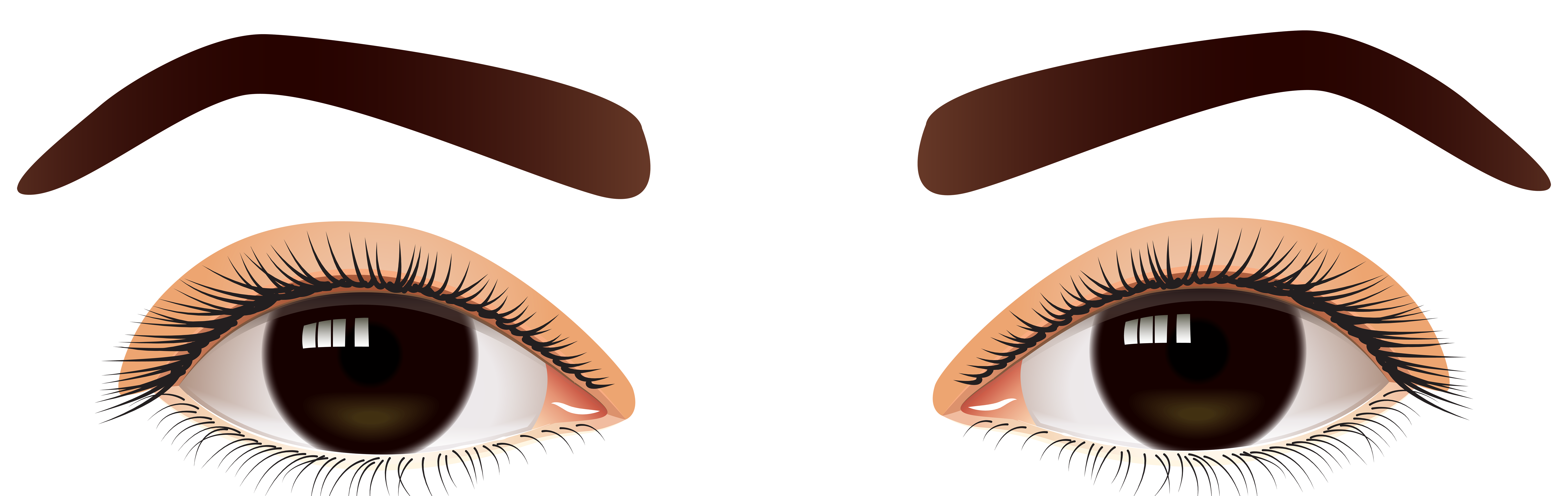 Brown eyes real and. Website clipart responsible
