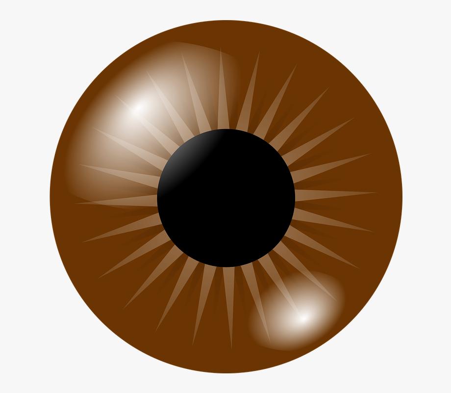 Eyes clipart brown eye. Transparent background free