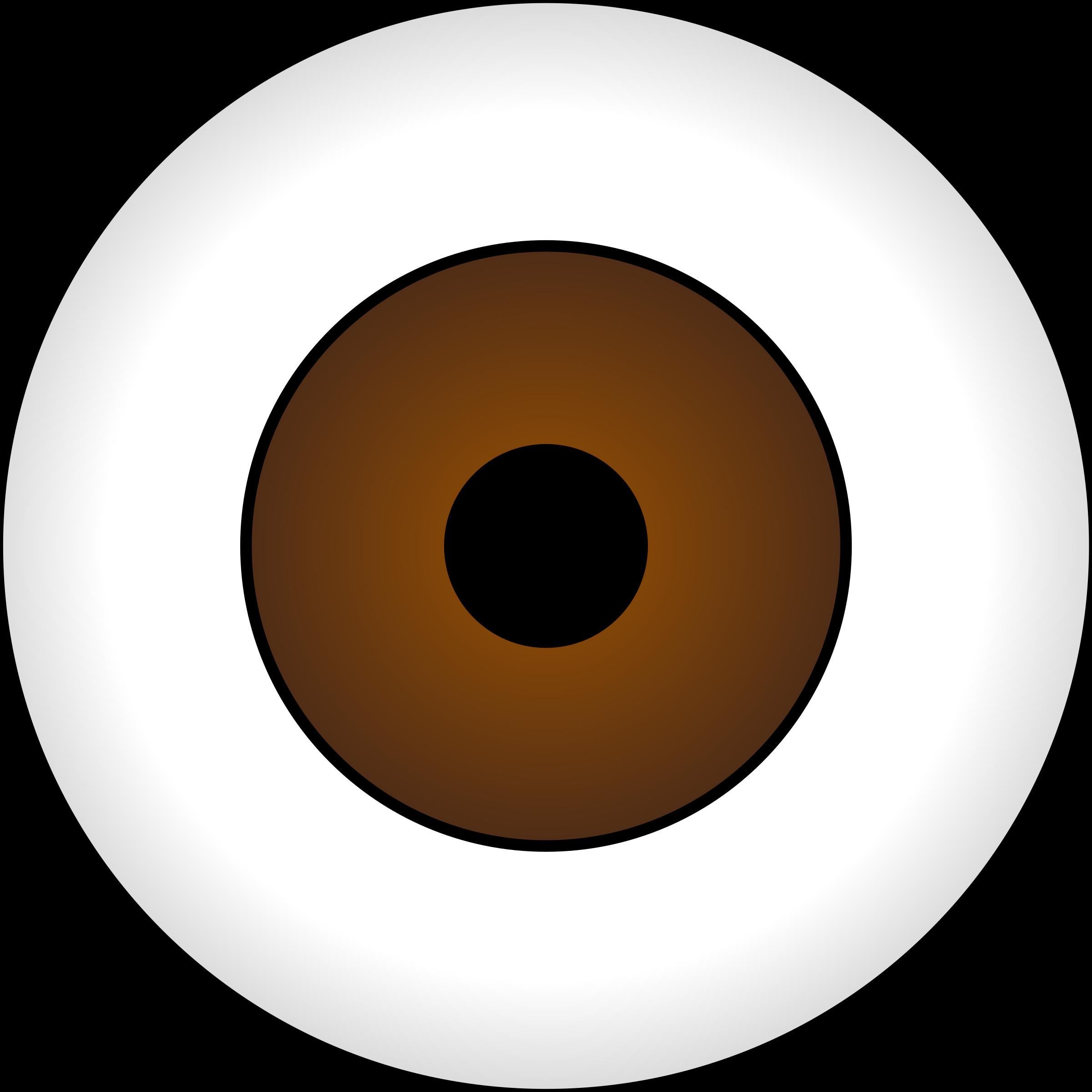 Olhos castanhos brown eye. Eyeballs clipart eys