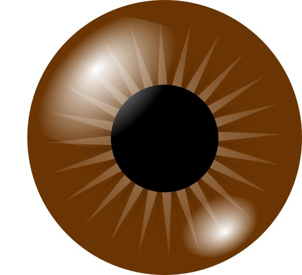 Brown eye clip art. Eyes clipart brow