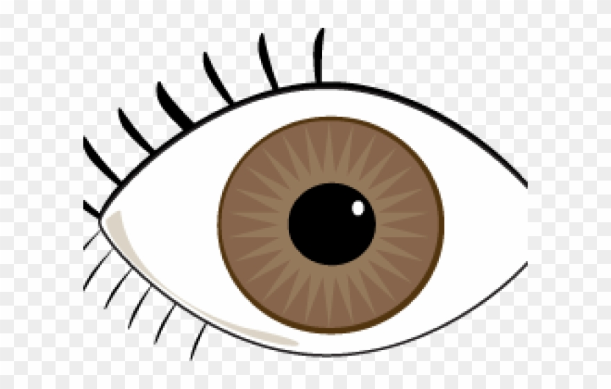 Eyes clipart brown eye. Blue our and ears