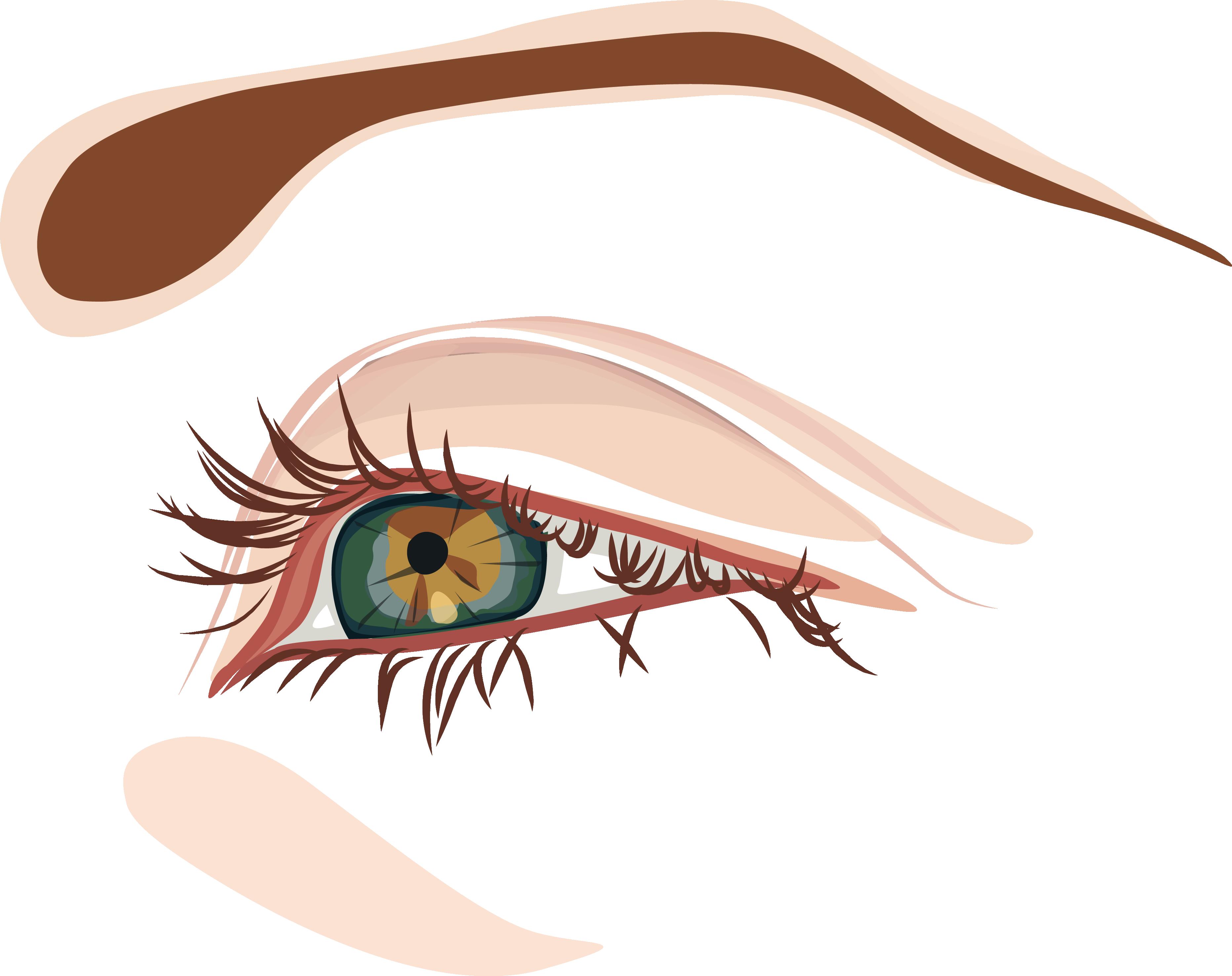 Eye clip art cartoon. Eyelash clipart illustration