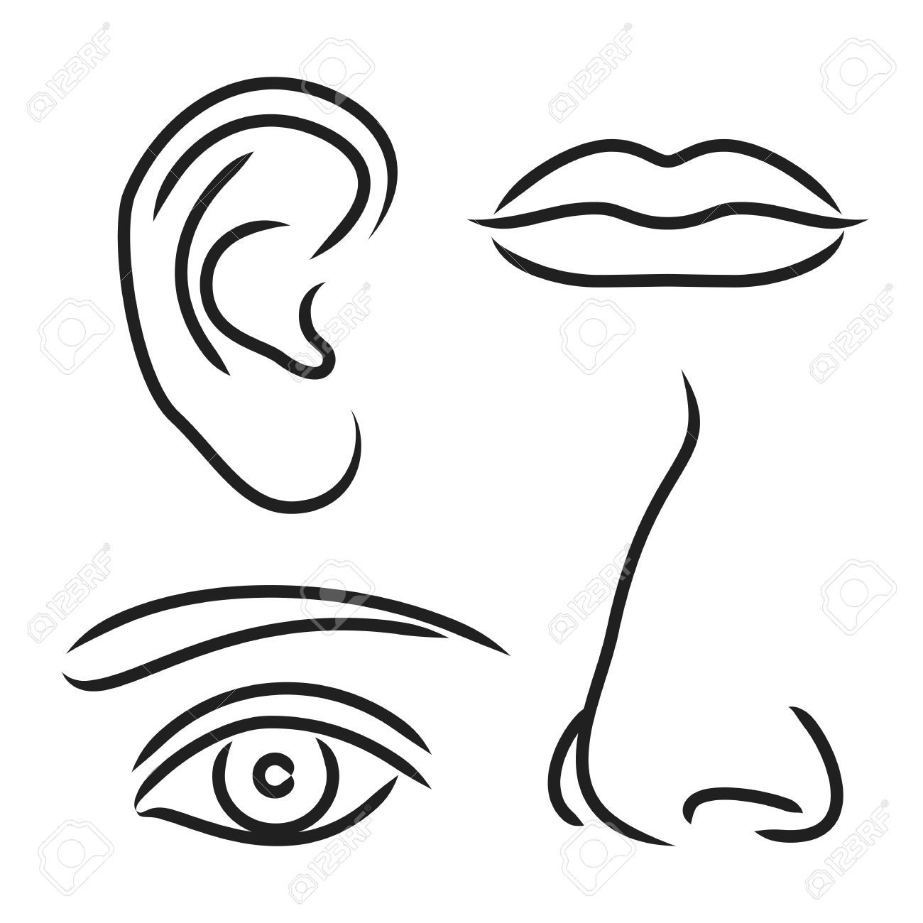 awesome noses mouth. Eyebrow clipart printable