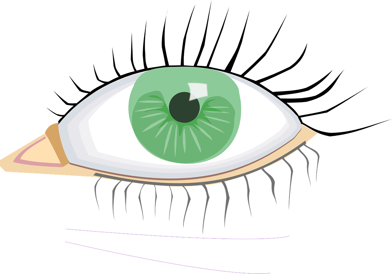 Eye clipart eyelash. Macular degeneration association dividend
