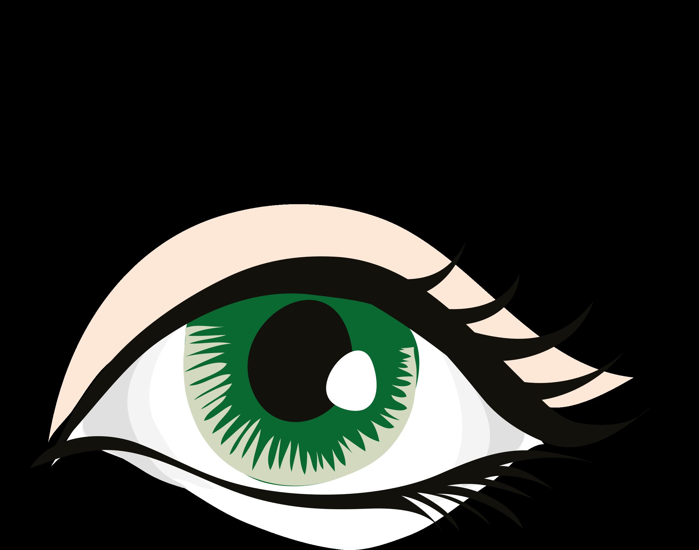 Eyelash clipart realistic. Eye big image png