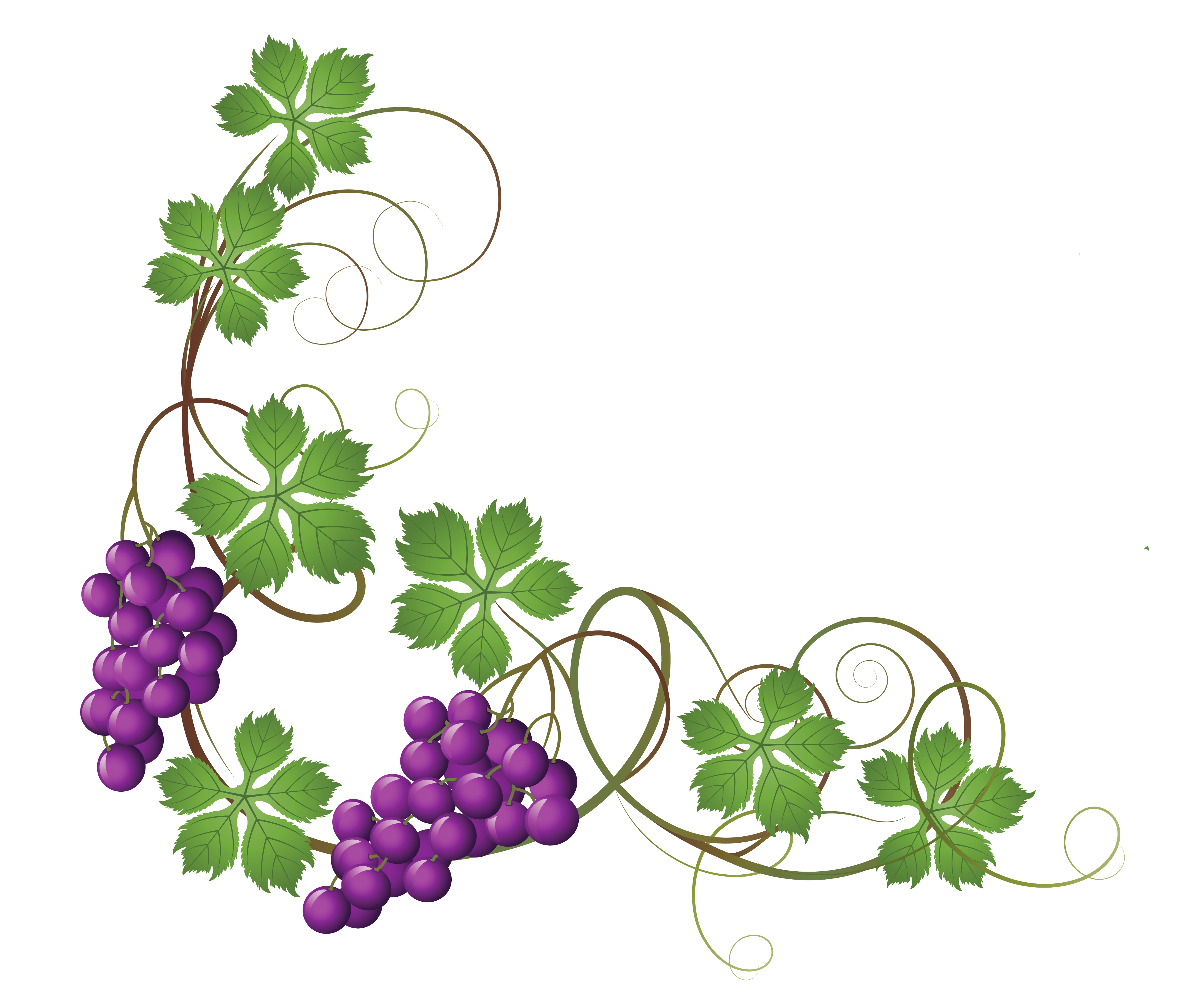 grape clipart wreath