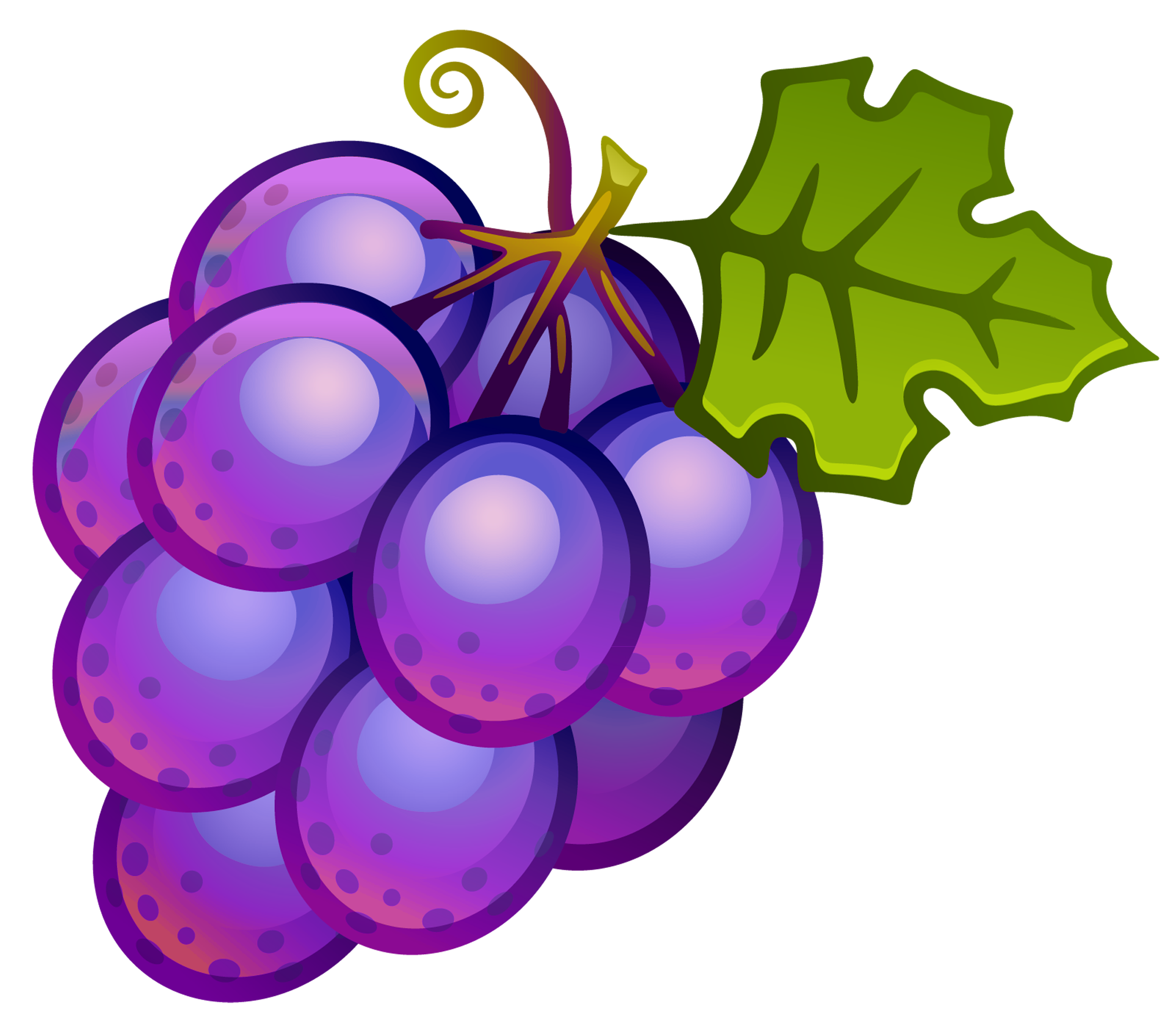 Bunch of grapes drawing. Clipart fruit single