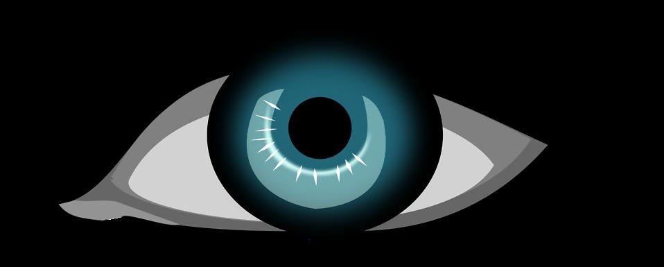 Eye free stock photo. Eyelash clipart illustration