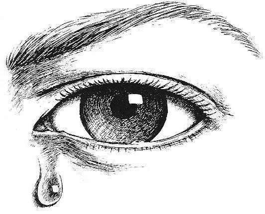 Crying eyes clip art. Eyeball clipart eye drawing