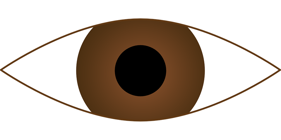 Clipart eye orange. Eyes brown graphics illustrations