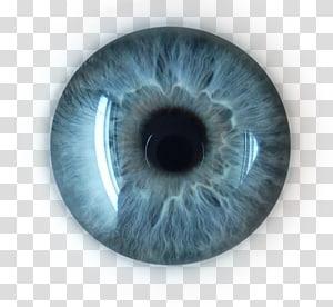 Eyeballs clipart robot. Iris humanoid eye picsart