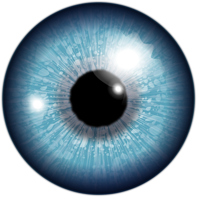 Eyes png images free. Eyeballs clipart real